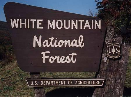 White-Mountain-National-Forest